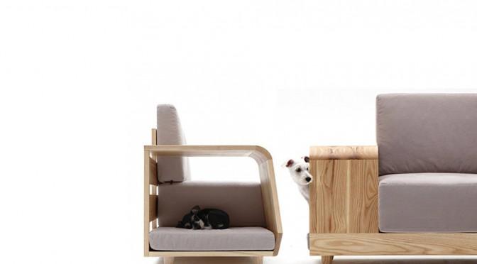 cachorro_sofá_para