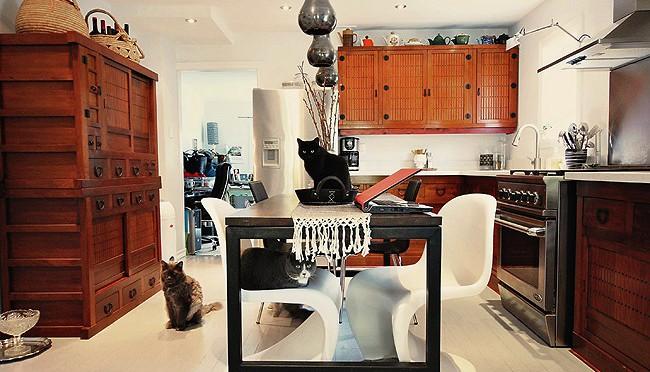pets_móveis_primavera_casa_decoração