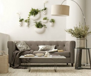 plantsinside05_rect540